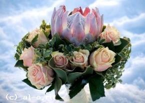 http://al-o.okis.ru/img/al-o/svadba-fl1290x206.jpg